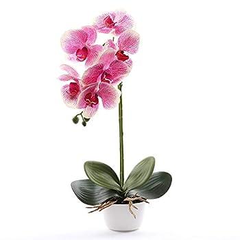 Livilan Silk Phalaenopsis Flower Arrangement, Artificial Orchid Flowers with White Vase, Wedding Party Home Centerpiece Decor (Fuchsia)