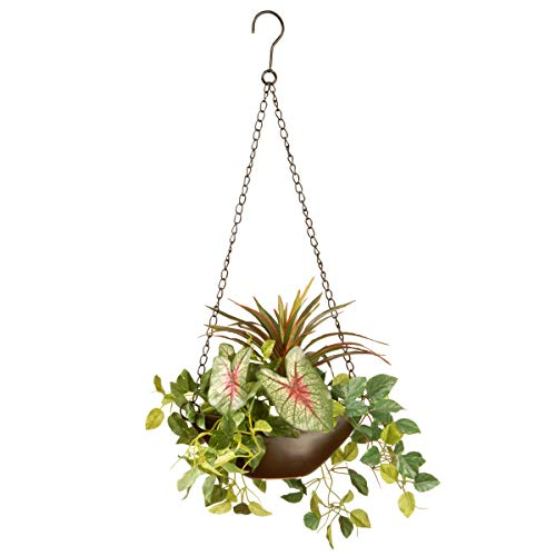 National Tree Assorted Greens Hanging Basket, 9 Inch,