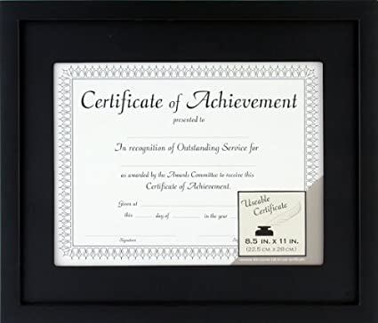Amazon.com - Pinnacle 11-inch-by-14-inch Matted Wood Document Frame ...