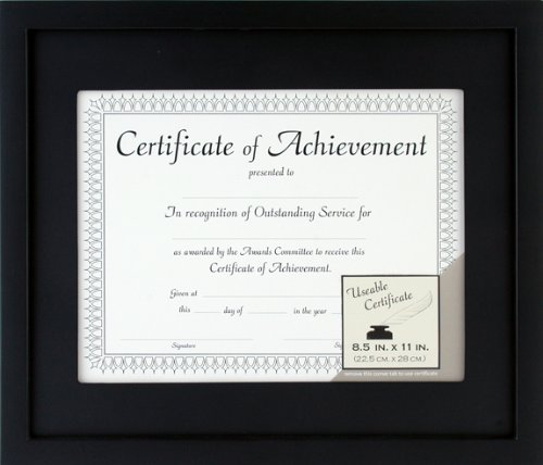 Pinnacle 11-inch-by-14-inch Matted Wood Document Frame, Black