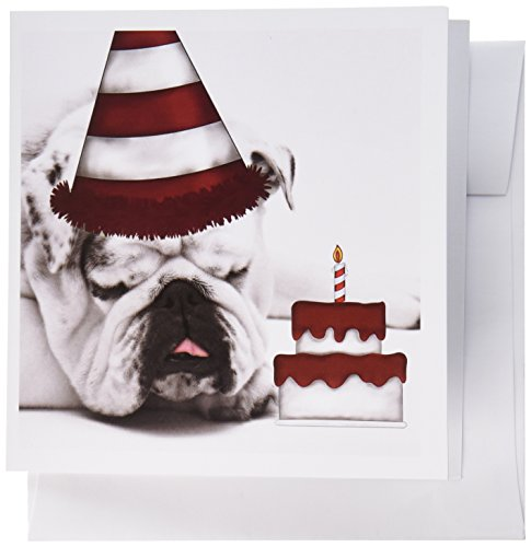 Bulldog Birthday (3dRose Cute Bulldog with a Birthday Hat and Birthday Cake. - Greeting Cards, 6 x 6 inches, set of 6 (gc_173243_1))