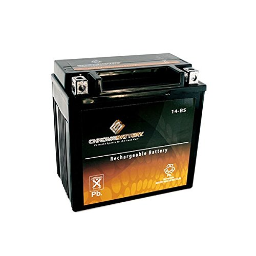 YTX14-BS High Performance - Maintenance Free - Sealed AGM Motorcycle Battery - Es 350 Battery