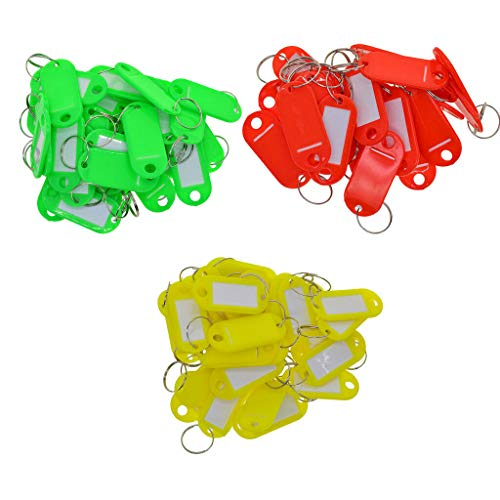 [해외]NATFUR 150Pcs Key Tags Coloured Blank ID Fobs Plastic Identity Keyrings Car Ring Key-Chain for Men Perfect for Gift Elegant Pretty Fine Goodly / NATFUR 150Pcs Key Tags Coloured Blank ID Fobs Plastic Identity Keyrings Car Ring Key-C...
