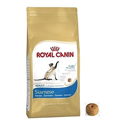 Royal Canin Siamese Cat Adulto Seco Gato Alimento Equilibrado y Completo Comida Gato 4 kg