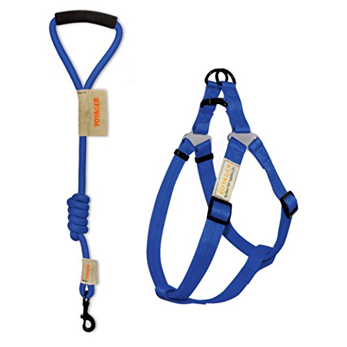 Voyager Step-in No Pull Adjustable Dog Walking Harness with 3 feet Foam Handle Nylon Webbing Mountain Rope Leash and Carry Pounch by Best Pet Supplies - Blue, Large by Best Pet Supplies, Inc.