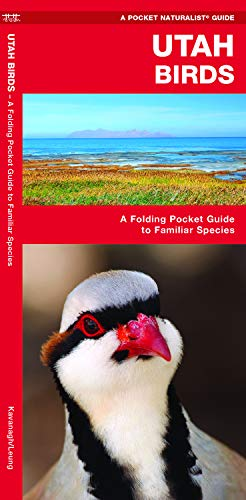 Utah Birds: A Folding Pocket Guide to Familiar Species (Wildlife and Nature Identification)