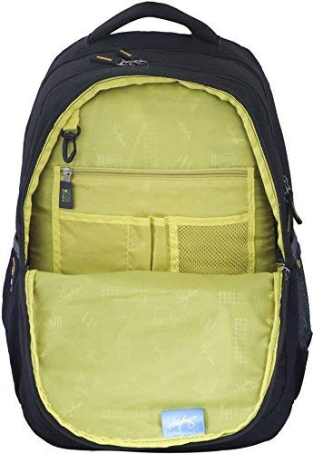 Skybags Bingo Extra 35.5005 Ltrs Green School Backpack (SBBIE01GRN)