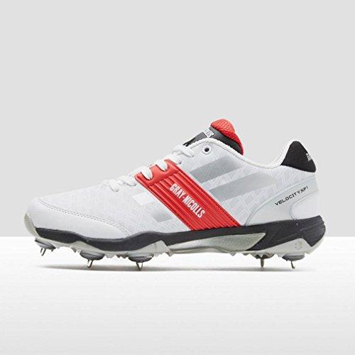 Calzado 7 Xp1 Grey Zapatillas Velocity nicolls Entrenamiento De Blanco Hombres Cricket Deporte q4PIO7fw