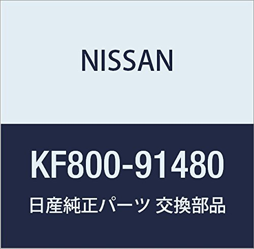 NISSAN(ニッサン) 日産純正部品 スプレーガン KF800-91480 B01N042WL1