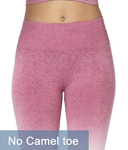 MMIW COLLECTION Seamless High Waisted Gym Leggings for Women Stretch Yoga Pants Ombre Workout Running Leggings(1901-Pink-S)