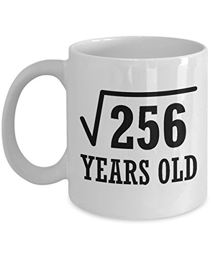16th Birthday 16 Years Old White Mug - Square Root 256 - Unique Novelty Ceramic Coffee Cup And Present For Geek Nerd Math and Science Lover - Perfect Christmas and B Day Gift For Girls And Boys