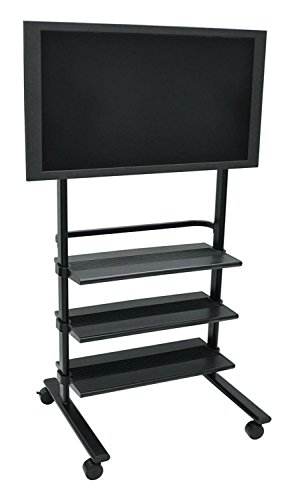 H. Wilson Versatile LCD/Flat Mobile Panel Stand (Library Plasma Console)