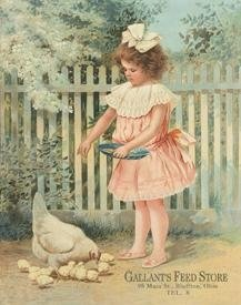 Store Tin Sign Feed (Gallant's Feed Store Girl Feeding Chickens Tin Sign 13 x 16in)