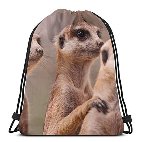 Meerkats three family animals Drawstring Backpack Bag Lightweight Gym Travel Yoga Casual Sackpack Shoulder bag for Hiking Swimming -