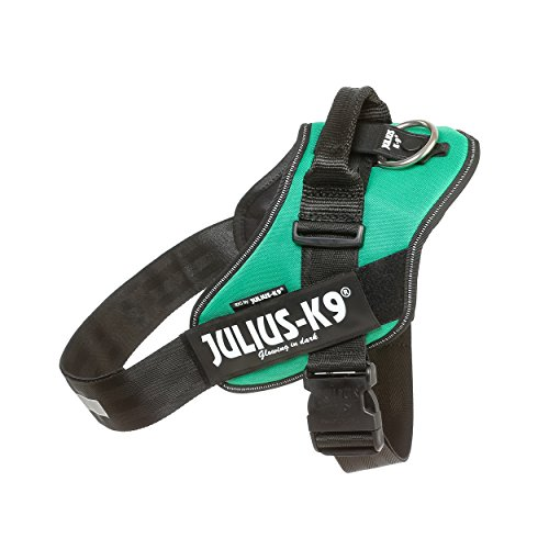 (Julius-K9 16IDC-GG-2 IDC Powerharness, Dog Harness, Size 2, Grass Green)