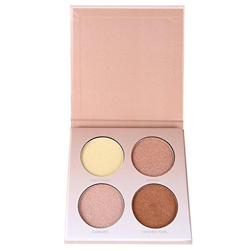 Petansy 4 Colors Face Concealer Kit Shimmer Highlighters Contour Powder Palette (Shimmer Kit)