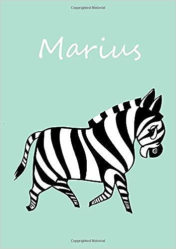 personalisiertes Malbuch//Notizbuch//Tagebuch Luisa: Malbuch A5 blanko A5 Zebra