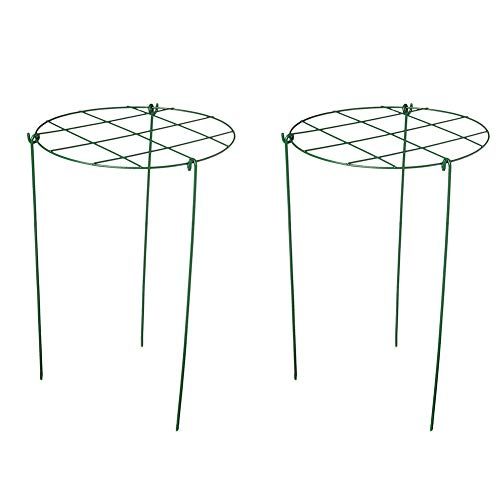 cozyou 2-Pack Grow Through Hoops Plant Support, 11.8 Wide x 18 High, 3 Legs