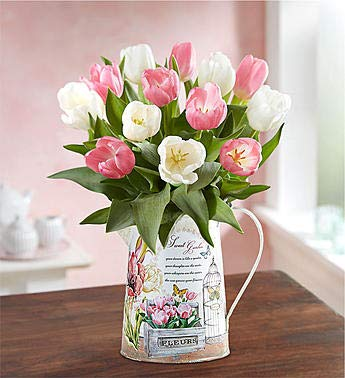 1800Flowers Sweet Spring Pink and White Tulips Fresh Flower Bouquet with Garden Pitcher (15 Tulips)