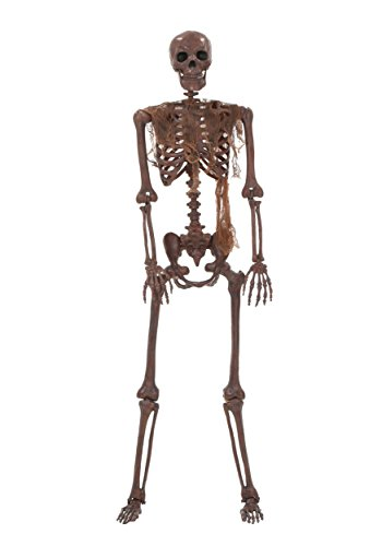 Decayed Poseable Skeleton - ST