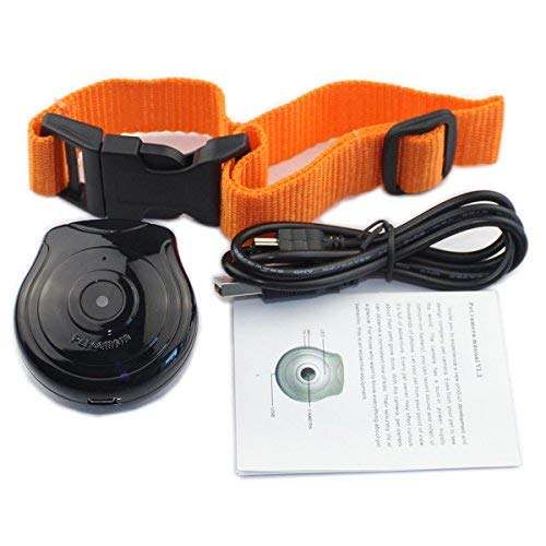 Digital Pet Collar Cam Camera DVR Video Recorder Monitor for Dog Cat Puppy Black (with TF Card 16GB)