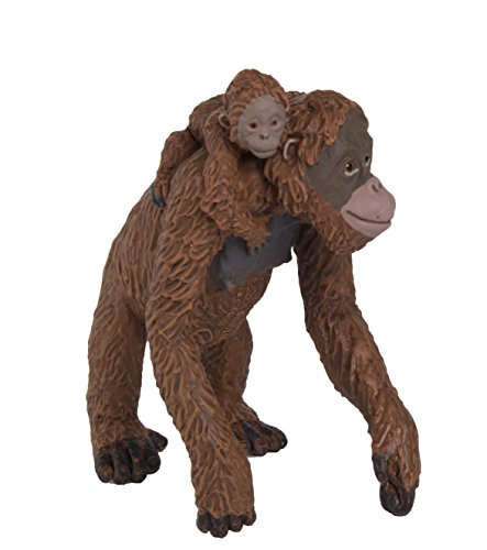 Safari Ltd Wild Safari Wildlife – Orangutan with Baby – Realistic Hand Painted Toy Figurine Model – Quality Construction From Safe and BPA Free Materials – For Ages 3 and Up