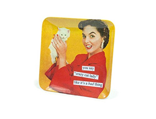 Anne Taintor Melamine Mini Serving Tray Plate - You Say Crazy Cat Lady Like ItÕS A Bad Thing (Tray Serving Cat)