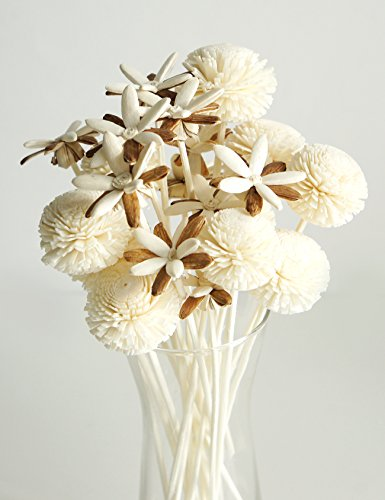 (Plawanature Set of 10 Two Tone Starflower and Snow Ball Sola Flower with Reed Diffuser for Home Fragrance Aroma Oil. )