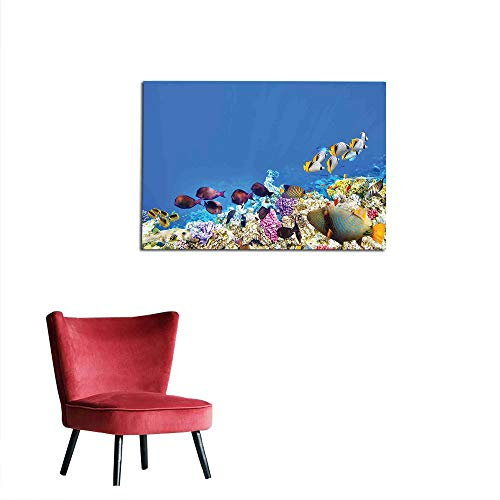 kungfu Decoration Photographic Wallpaper Ocean,Fish Schools Swimming Submerged Ancient Coral Reefs Nature Marine World,Blue Yellow and Purple Custom Poster W23.6 x L19.7 ()