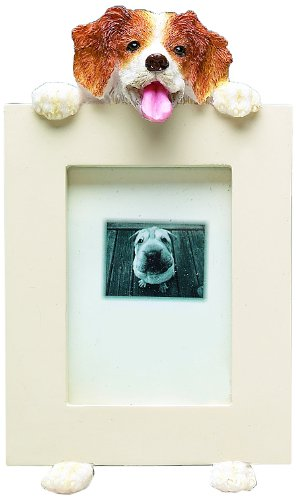Amazon.com : E&S Pets Brittany Spaniel Picture Frame-Holds 2.5\