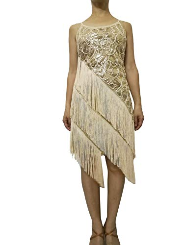 Fringed Sequined 1920's Gatsby Themed Dance Competition Costumes Dresses Women ()