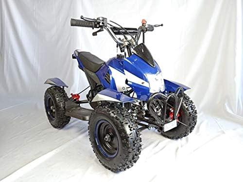 Mini quad de gasolina con motor de 49cc de 2 tiempos -ATV07 COBRA ...