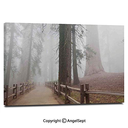 Modern Salon Theme Mural Evergreen Forest and Walkway in Sequoia National Park Foggy Morning Nature Art Painting Canvas Wall Art for Home Decor 24x36inches, Grey Brown