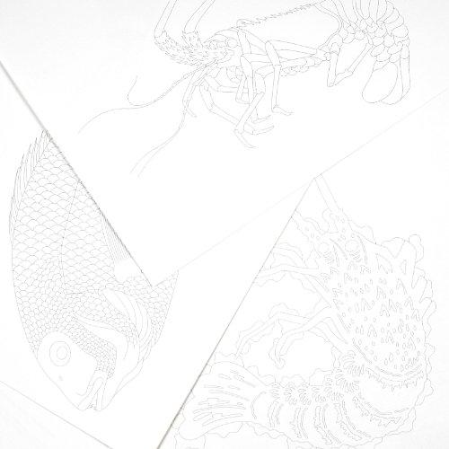 Pepin Press Pepin Press Japanese Designs : ARTISTS'COLOURING BOOK (98055 ) Photo #4