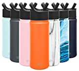 Simple Modern Insulated Water Bottle with Straw Lid Reusable Wide Mouth Stainless Steel Flask Thermos, 18oz (530ml), Autumn