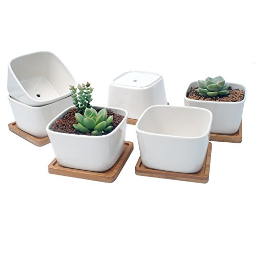 3.3″ White Ceramic Hexagon Succulent Cactus Planter Pots with FREE Bamboo Tray for Home Decoration 1 Pack of 6 For Sale