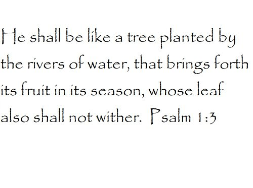 Tapestry Of Truth - Psalm 1:3 - TOT6703 - Wall and home scripture, lettering, quotes, images, stickers, decals, art, and more! - He shall be like a tree planted by the rivers of water, that brings... (A Tree Planted By Rivers Of Water)