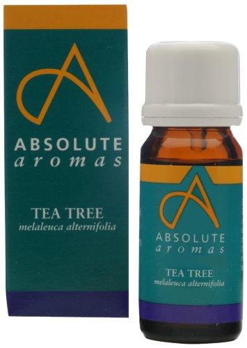 Absolute Aromas Tea Tree 10ml Pure Essential Oil T125/10ml