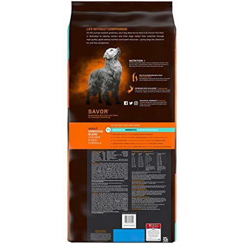 Buy dry dog food for labs