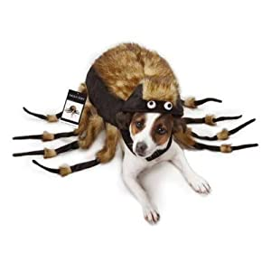 TARANTULA Fuzzy Spider Dog Halloween Costume ALL SIZES Zack u0026 Zoey (XS)  sc 1 st  Amazon.com : chihuahua spider costume  - Germanpascual.Com