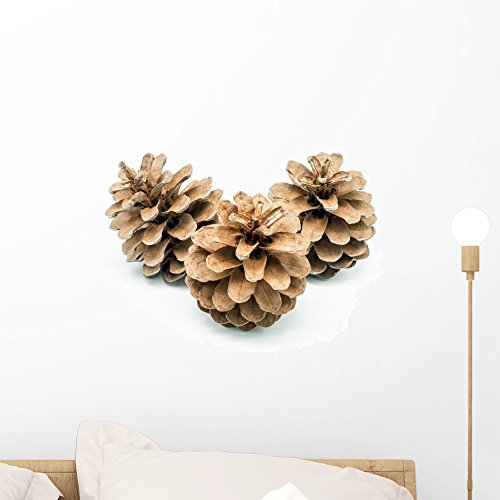 Wallmonkeys Pinecone Wall Decal Peel and Stick Graphic WM320370 (18 in W x 12 in H)