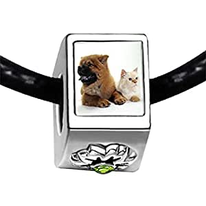 Chicforest Silver Plated Relaxing Pet Pals Photo Peridot Crystal August Birthstone Flower Charm Beads Fits Pandora Bracelets