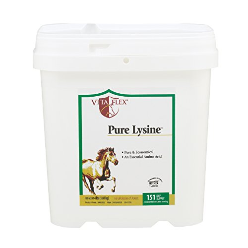 Vita Flex Pure Lysine, 151 Day Supply, 4 - Equine Flex Vita