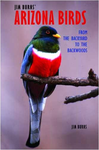 Jim Burns' Arizona Birds: From the Backyard to the Backwoods pdf epub