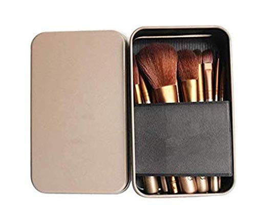 10) NAKEDPLUS Makeup Brushes Kit with A Silver Storage Box - Set of 12