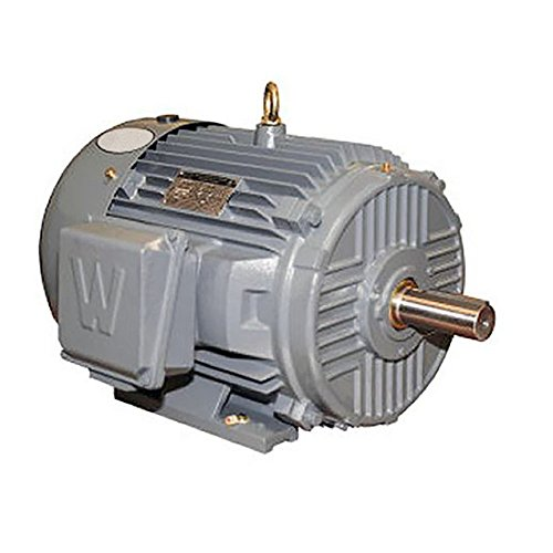 (Worldwide Electric EP15-18-254T Worldwide Epic Plus Severe Duty Motors Three-Phase - TEFC Enclosure - Rigid Base, 15 hp, 1800 RPM, 254T Frame, 17.1 Amps)