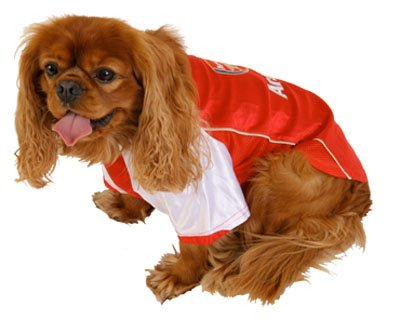 brand new 4d64a 38390 Arsenal F.C. Dog Shirt - Medium: Amazon.co.uk: Kitchen & Home
