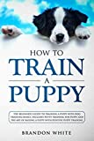 img - for How to Train a Puppy: The Beginner's Guide to Training a Puppy with Dog Training Basics. Includes Potty Training for Puppy and The Art of Raising a Puppy with Positive Puppy Training book / textbook / text book