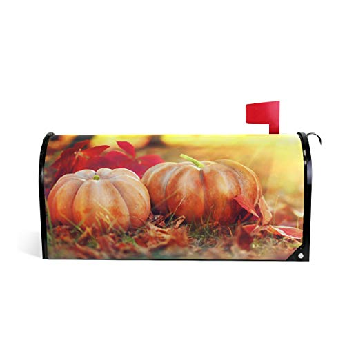 Harvest Mailbox - ZZKKO Holiday Autumn Harvest Thanksgiving Day Halloween Pumpkins Mailbox Covers Magnetic Seasonal Colorful Pattern Home Houses Decorations,25.5x20.8 Inch Large Size,Multicolor