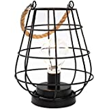 """JHY DESIGN 8.5"""" Cage Bulb Lantern Decorative Lamp Battery Powered Cordless Accent Light with Warm White Fairy Lights LED…"""